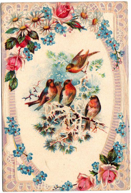 Pretty postcard11