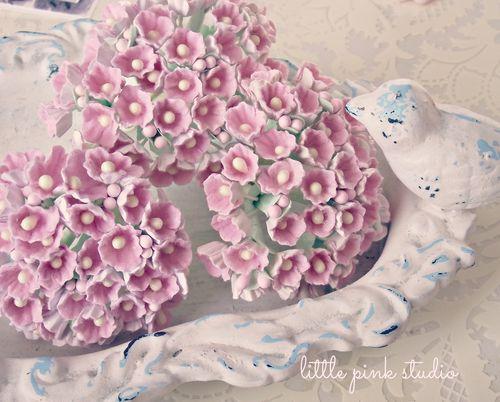 Pink posies 14