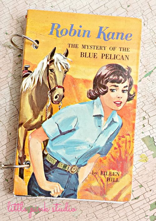 Robin kane journal