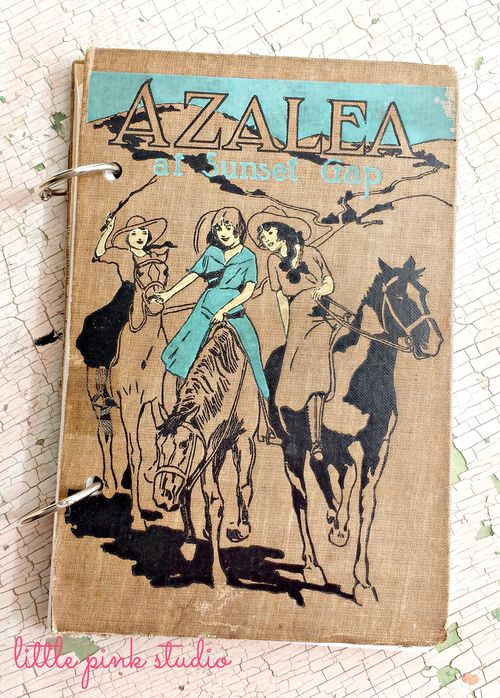 Azalea journal
